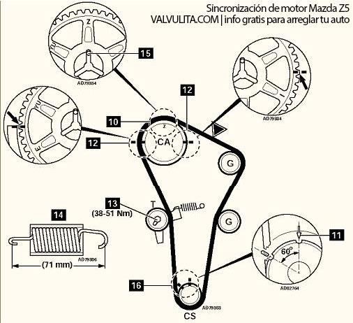 marcas de tiempo mazda protege 95 16 valvulas cadena en