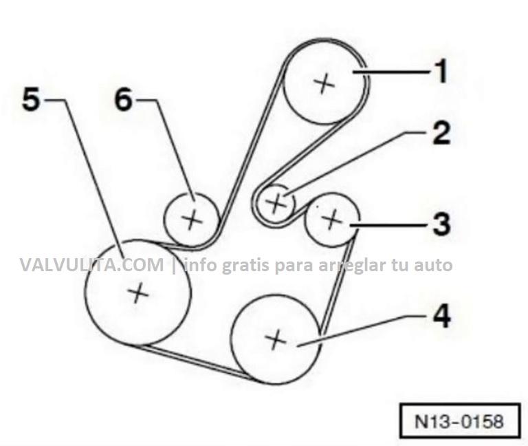 colocación o diagrama de la correa poly v