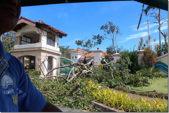 Typhoon Haiyan (38)