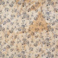 Wallpaper: health and cleanliness - Victoria and Albert Museum
