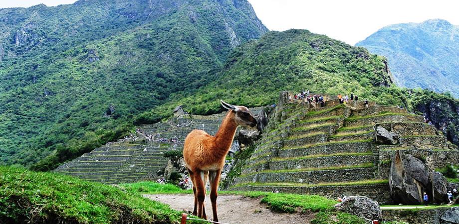 Montaña de Huaynapicchu: una aventura inolvidable para todos
