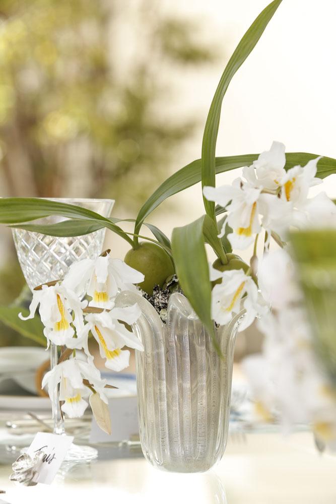 orquídeas phalaenopsis, ornithogalum e cymbidium