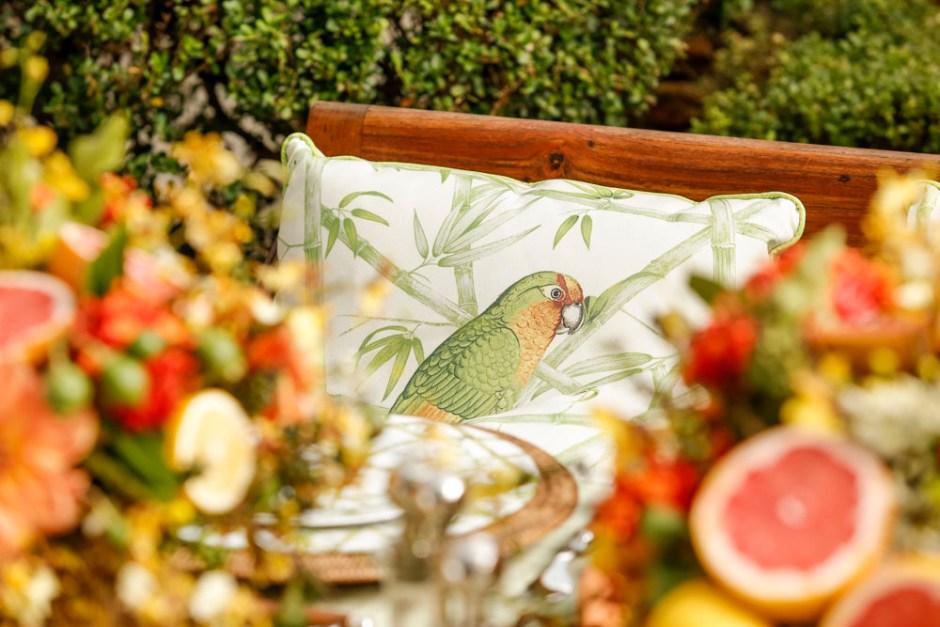 almofada com estampa de papagaio