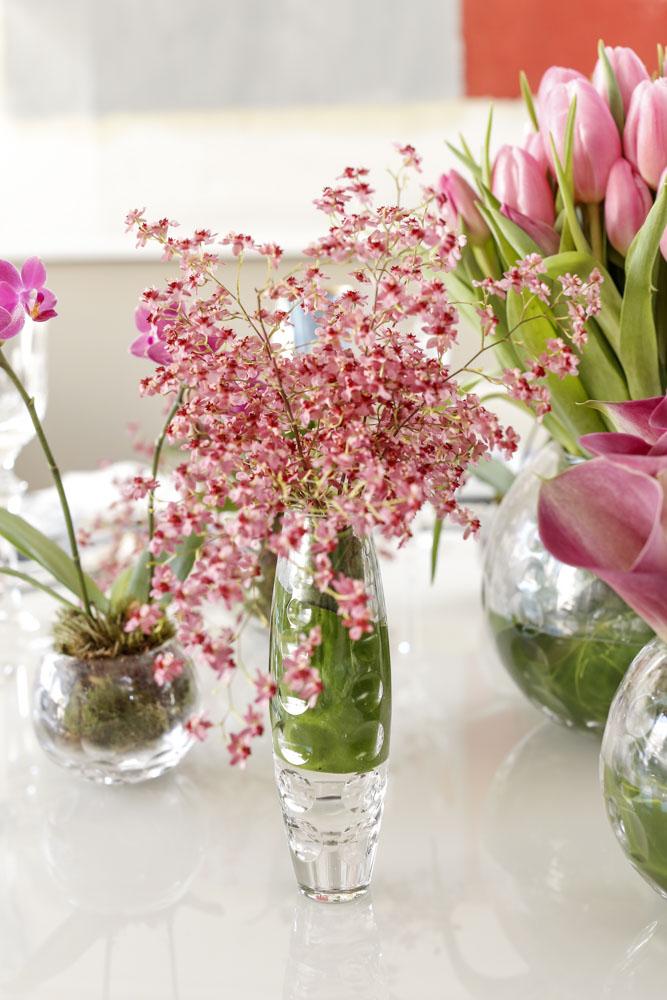 mini orquídeas rosas