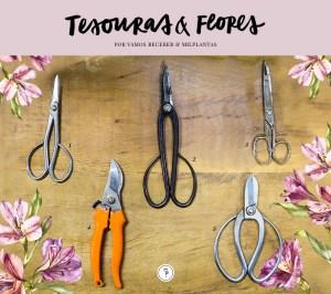 tesouras jardinagem