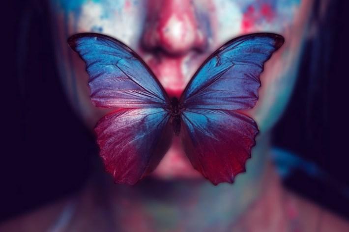 Segnalazione: La farfalla d'ombra di Yali Ou Ametistha