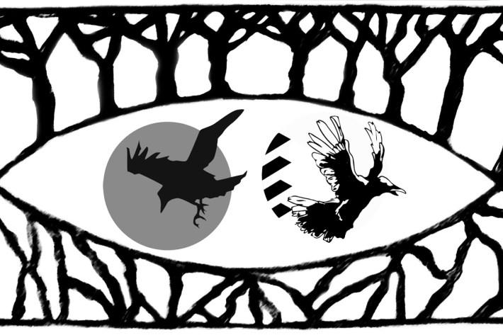 Segnalazione: Il Merlo e il Corvo di Federico Foria