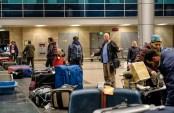 Wo ist der verflixte Koffer?