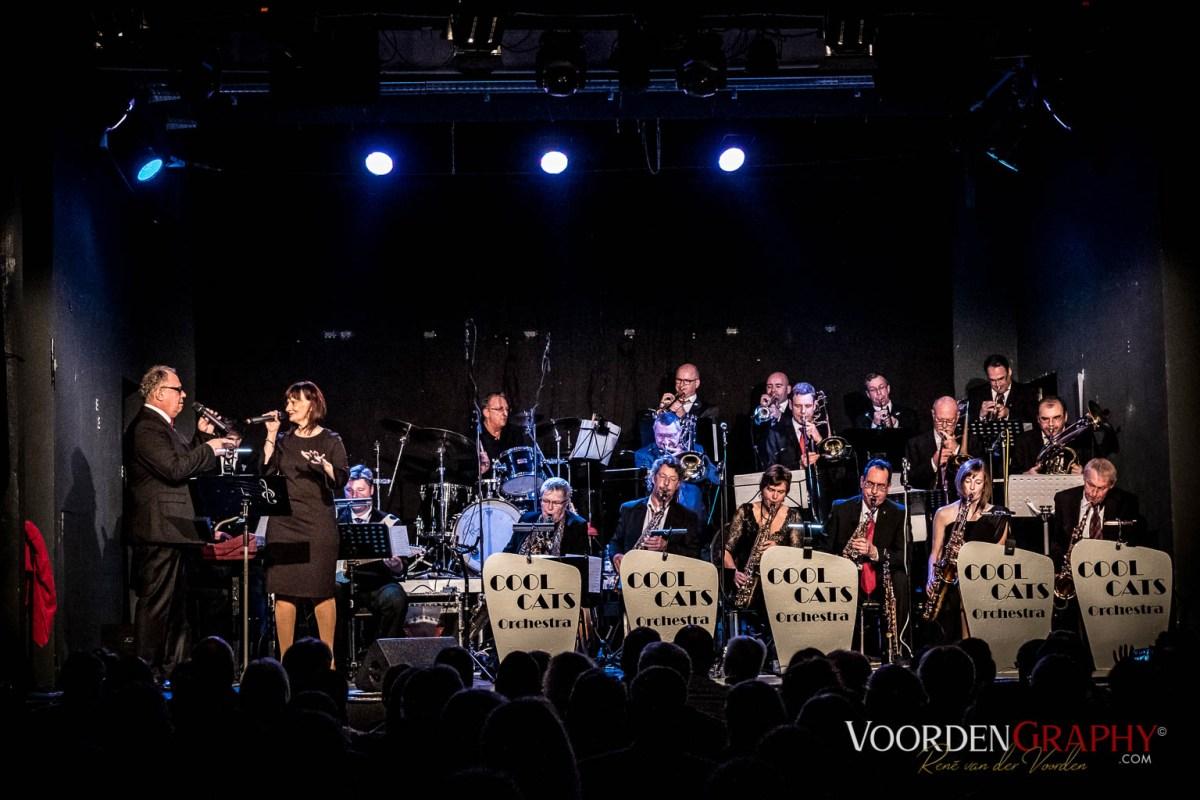 2017 Cool Cats Orchestra @ Rhein Neckar Theater Mannheim