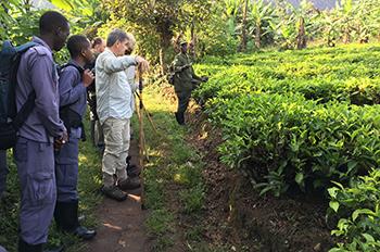 rondreis Oeganda - gorillatrekking