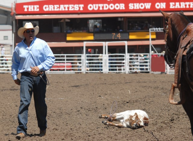 The Calgary Stampede A Spectacle Of Animal Abuse