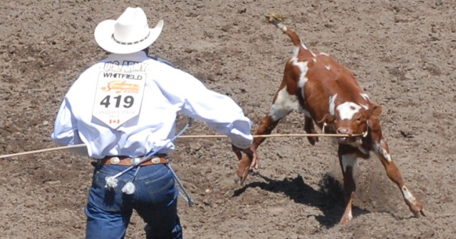 You Are Not Alone If You Oppose Rodeo Cruelty Vancouver