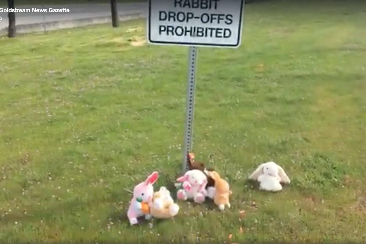 sign forbidding rabbit drop
