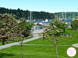 If you are heading to Vancouver Island this Summer, make sure to visit Salt Spring Island for a truly unique experience.