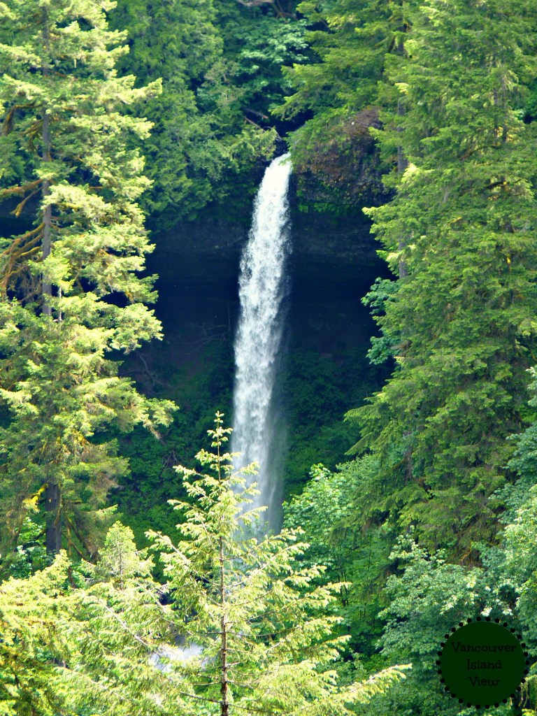 Oregon has the best State Parks, and Silver Falls is no exception. Make sure to check out this Oregon attraction during your summer holidays.
