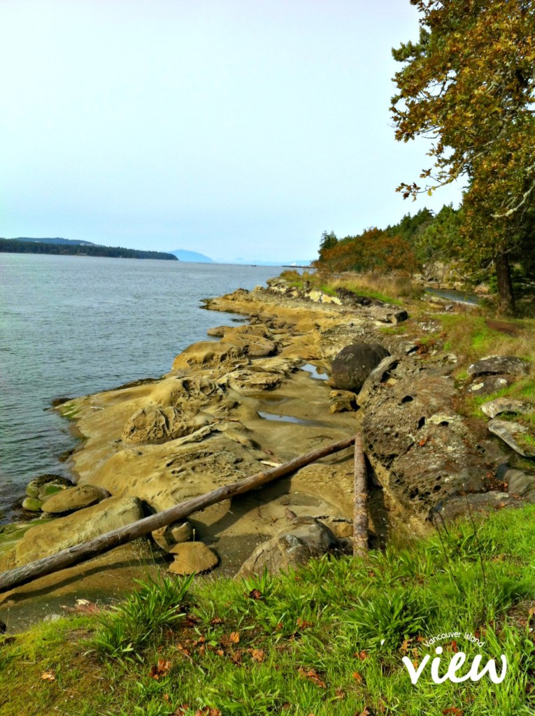 A view from one of the top 10 Nanaimo walks