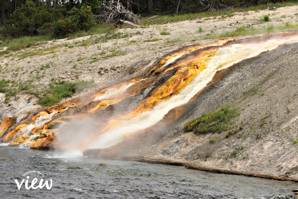 Firehole River - Yellowstone National Park highlights, and tips and tricks on making the most of your trip.