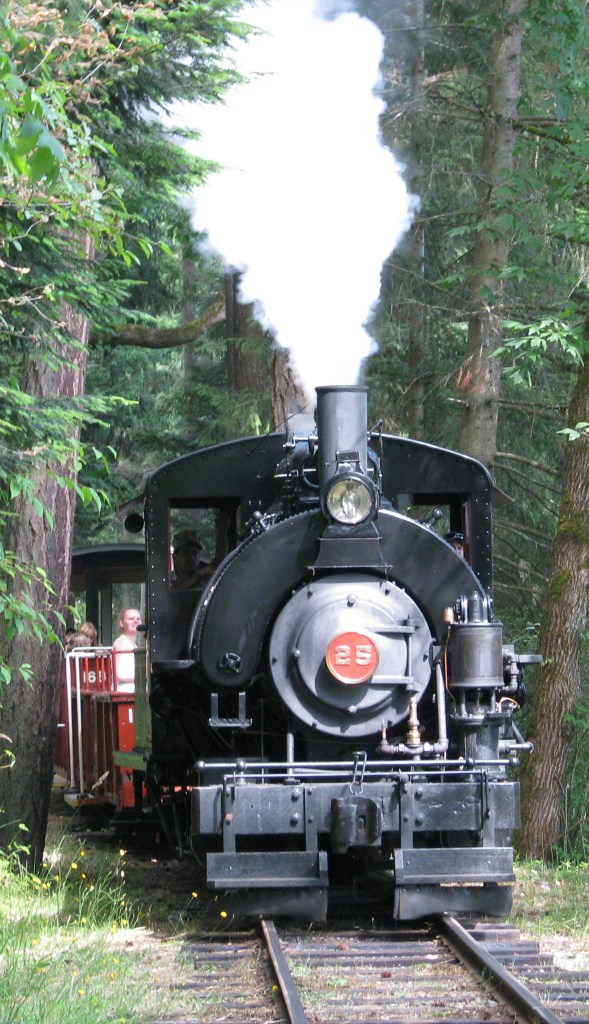 The BC Forest Discovery Centre steam train.