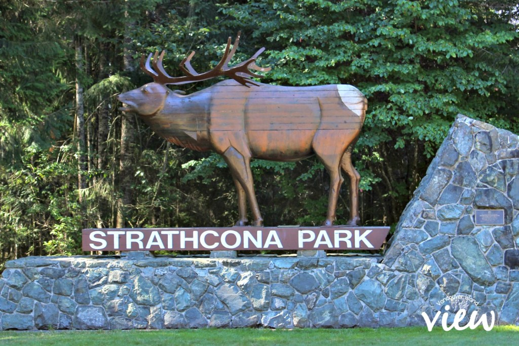 Strathcona Park - a magical place to explore on Vancouver Island.