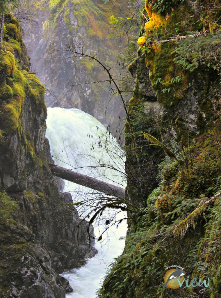 Little Qualicum Falls is one of the top ten incredible wonders of the Oceanside area.