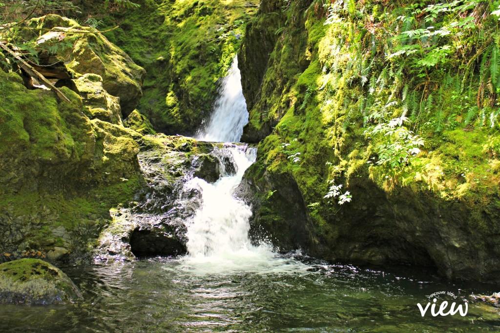 Often the most alluring waterfalls are those that are a little more hidden. Discover and explore these hidden waterfalls while on Vancouver Island!