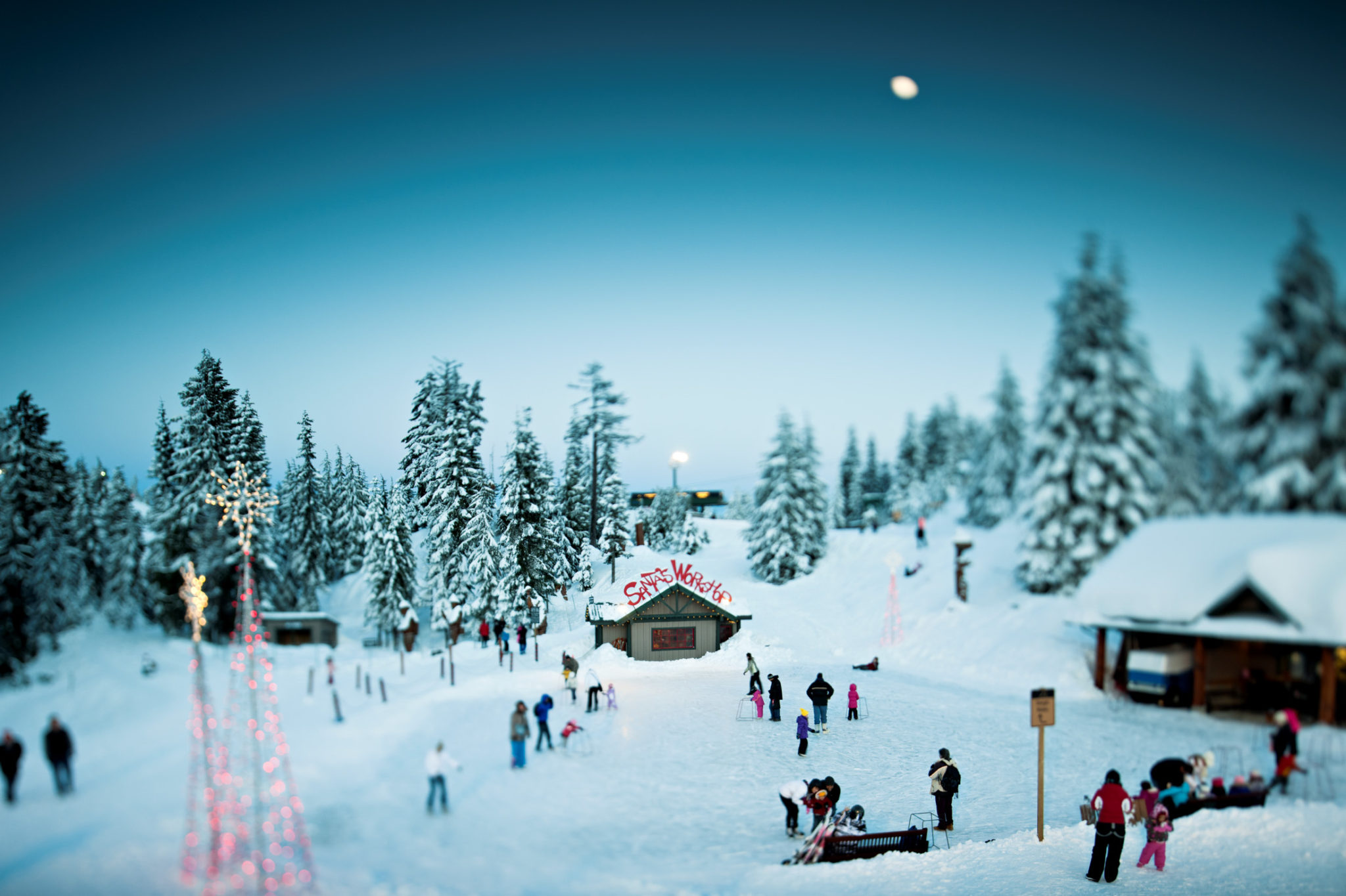 Have You Been Up To Grouse Mountains Peak Of Christmas Yet Its A Pretty Winter Wonderland And Definitely Worth Trip The Mountain Experience