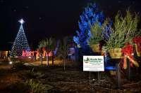 Holiday and Seasonal Lighting in Appleton, Wisconsin