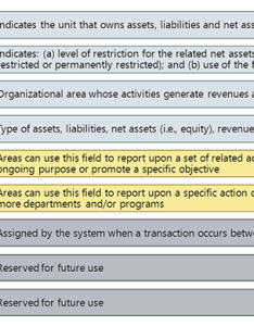 Chart of accounts segment values also skyvu and organizational structure rh vanderbilt