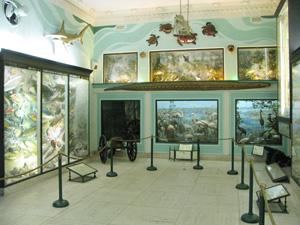 Vanderbilt-marine-museum-gallery