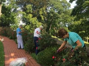 Volunteer gardeners beautify the Vanderbilt Estate