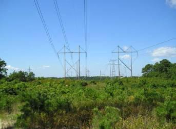 Niagra Mohawk New York Transmission Reinforcement Study