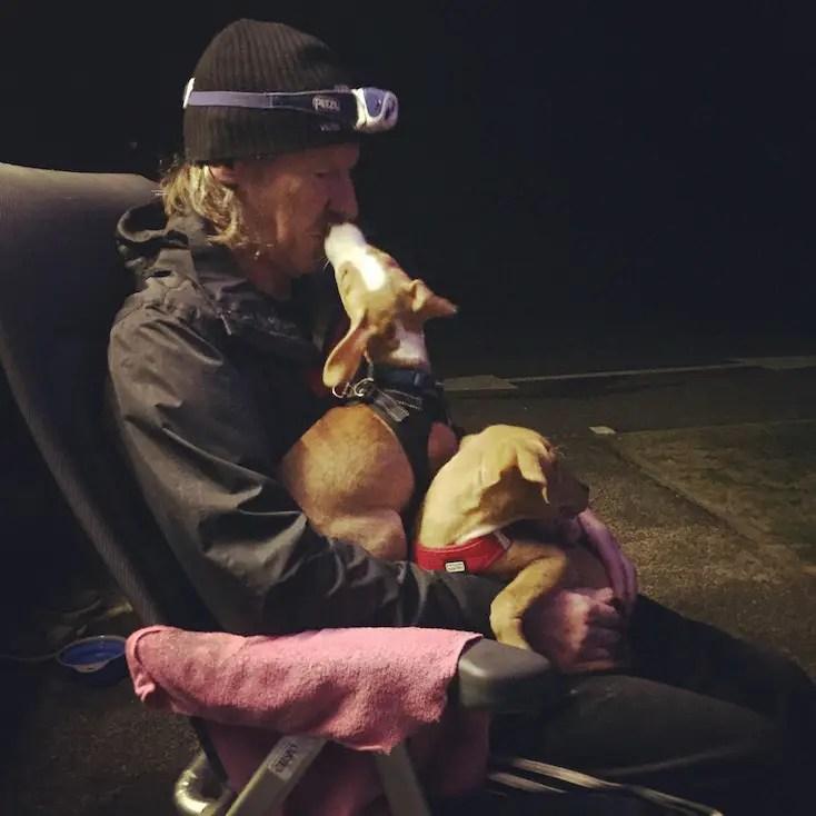 Hundemensch Hundeliebe Welpen Findlinge camping Wohnmobil Frankreich