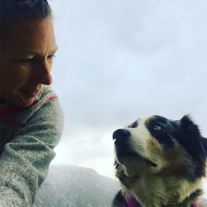 Montenegro Hund Camping Kotor Wohnmobil Kontraste