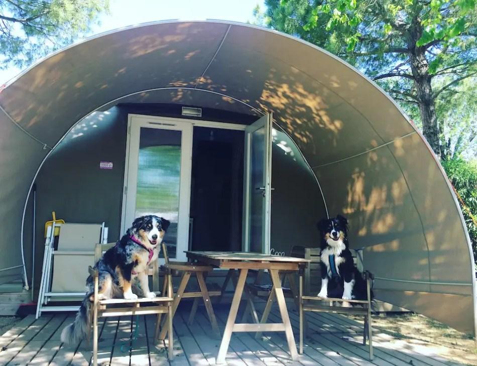 Europa Camping Village Hund Glamping Lodge Italien