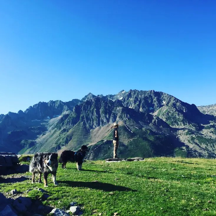 Frankreich Hund Camping Wildcamping
