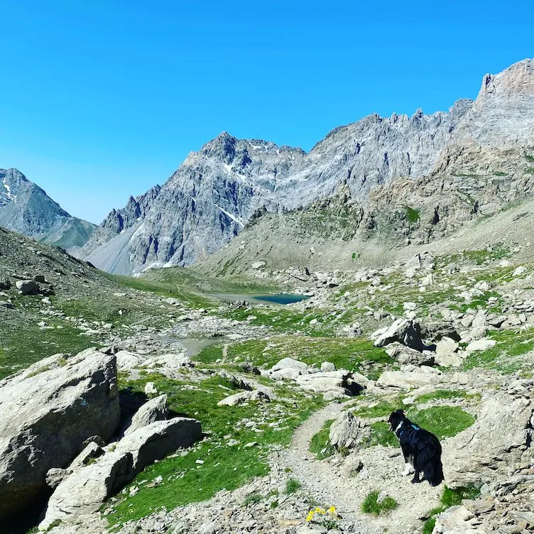 Valle Maira Wandern mit Hund Sentiero Dino Icardi Piemont Italien Cottische Alpen Roadtrip
