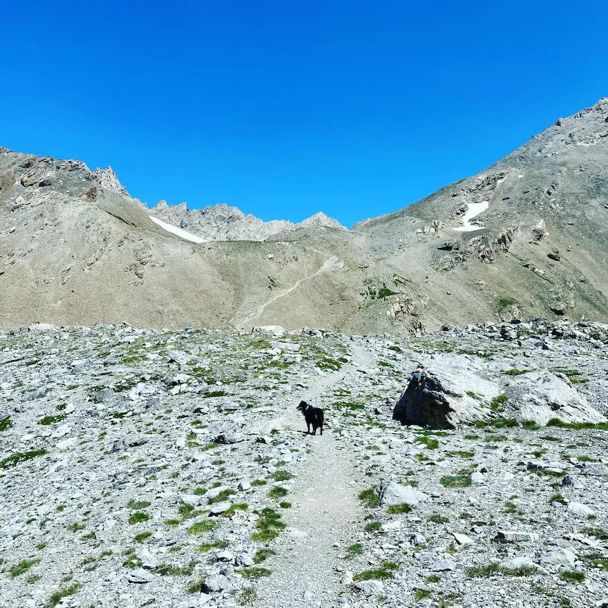 Sentiero Dino Icardi Wandern. mit Hund Australian Shepherd Piemont Cottische Alpen Colle de Gippiera