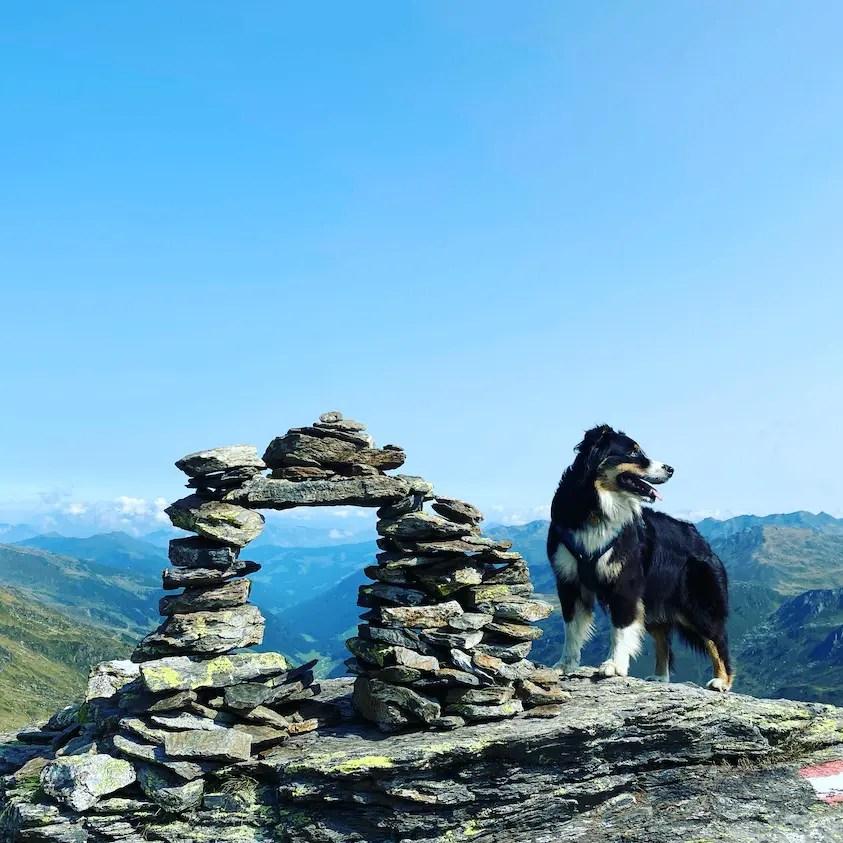 Torhelm Wandern mit Hund Kelchsau Langer Grund Herbst Tirol