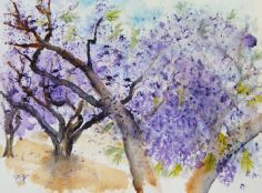 Tree painting: Blooming Jacaranda (watercolour 17 x 13 cm)