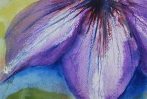 Watercolour Flowers: Night Petals (watercolour 10 x 15 cm)