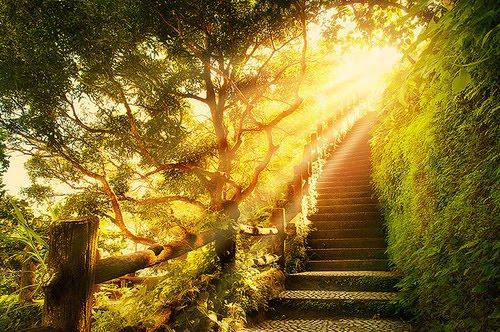 Sunlight Stairway, Plitvice, Croatia