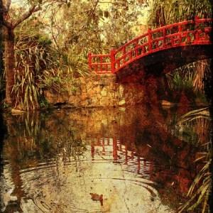 Travel- Kawasaki Bridge Wollongong Botanic Gardens
