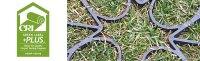 CRI Certified Carpet and Tile Products | van Gelder, Inc ...
