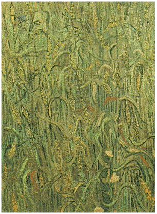 Ears Of Wheat By Vincent Van Gogh 104 Painting
