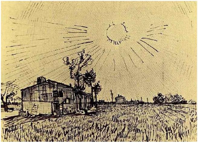 Field Arles Van Gogh