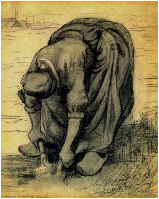 Sorrow Wallpapers With Quotes Peasant Woman Stooping With A Spade Digging Up Carrots