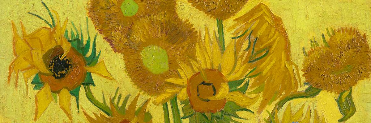 Vincent Van Gogh Quotes Wallpaper Real Sunflowers Van Gogh Gallery