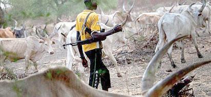 Fulani-herdsman