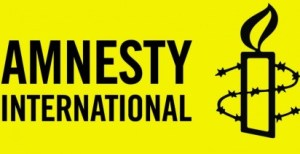 Aid Worker Killing: Amnesty Int'l expresses sadness, condemns act