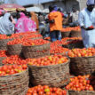 We need food systems that are equitable, sustainable – Kalibata